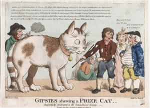 Gipsies shewing a prize cat